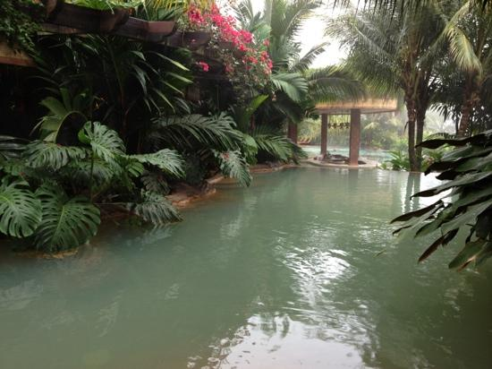 The Springs Resort and Spa: hot springs pool and bar