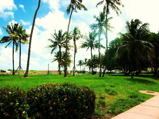 Lummus Park Beach: lummus park