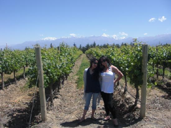 Argentina Wine Tours : Andeluna