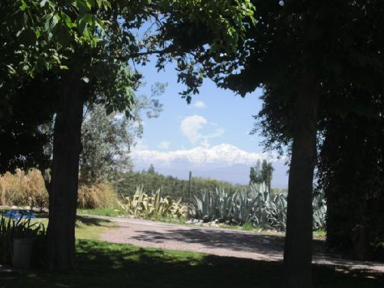Argentina Wine Tours : Almacén del Sur