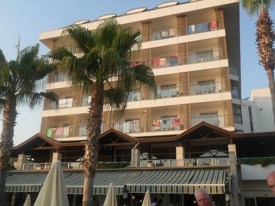Trendy Palm Beach: The hotel