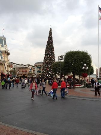 Hilton Garden Inn Anaheim/Garden Grove: Disneyland