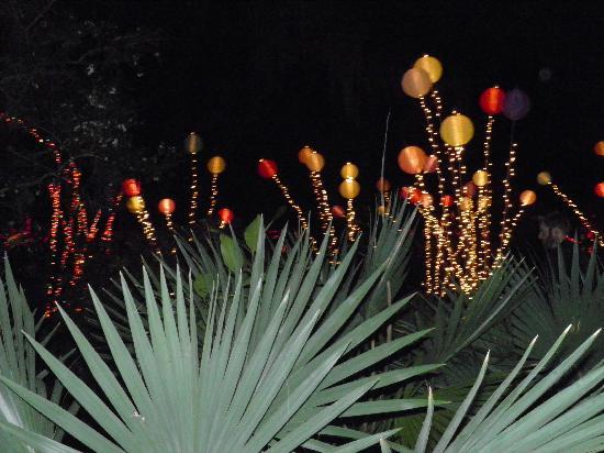 Night Of A Thousand Candles Picture Of Brookgreen Gardens Murrells Inlet Tripadvisor
