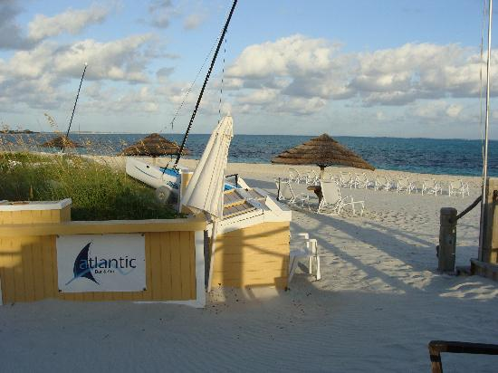 Atlantic Bar & Grill: Beachside service is available!