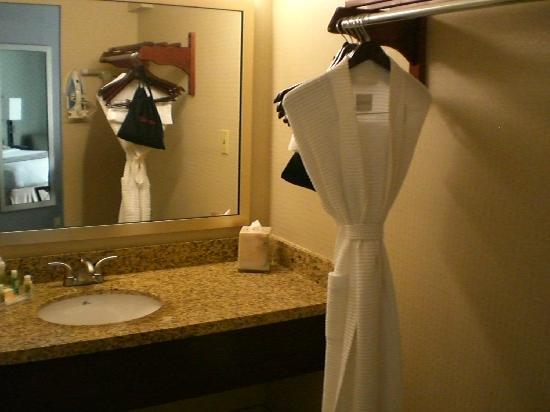 Holiday Inn Long Beach Airport Hotel: Sink/Closet zone