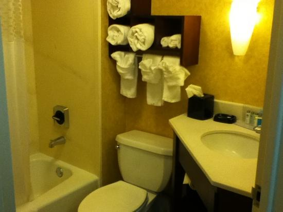 Hampton Inn Columbia-I-26 Airport : so nice and clean