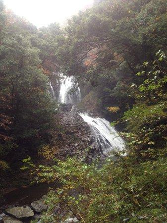 Yaedaki Fall