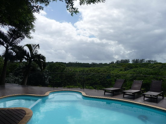 St Lucia Ecolodge and Conference Centre: Pool