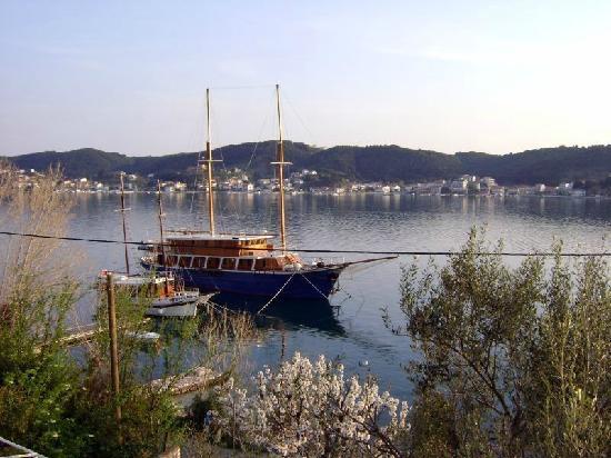 Supetarska Draga, Croazia: The view from my house