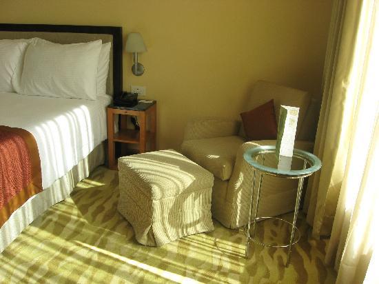 新德里酒店照片
