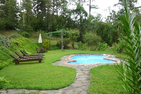 La Cacatua Lodge: Pool with jacuzzi