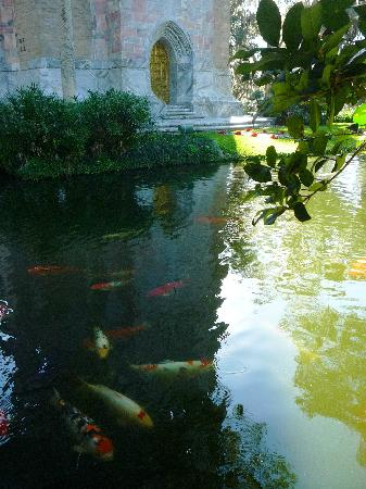Bok Tower Gardens: you may feed the fish at the ' Singing Tower' pond