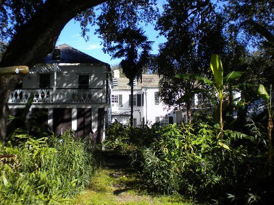 Grand Bayou Noir: The house 2
