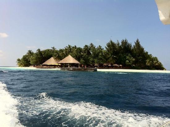 Angsana Ihuru: Die Insel vom Schnellboot aus