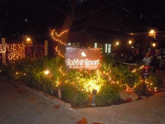 Night at the Rabbit Resort