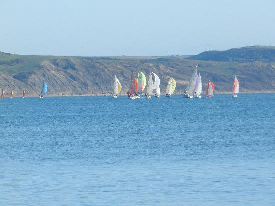 Weymouth Beach B&B: Sailing boats in Weymouth bay, site of the 2012 Olympic sailing and windsurfing events.