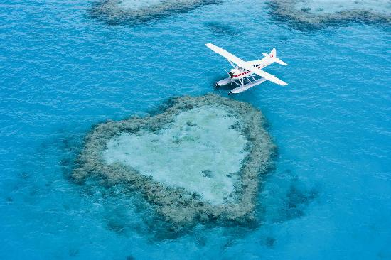 ‪كوينزلاند, أستراليا: Seaplane visit to Heart Reef on the Great Barrier Reef, The Whitsundays‬