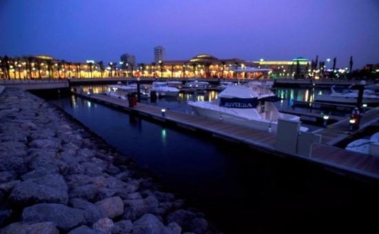 Marina World: Marina at dusk. Naseraldeen Asadalla
