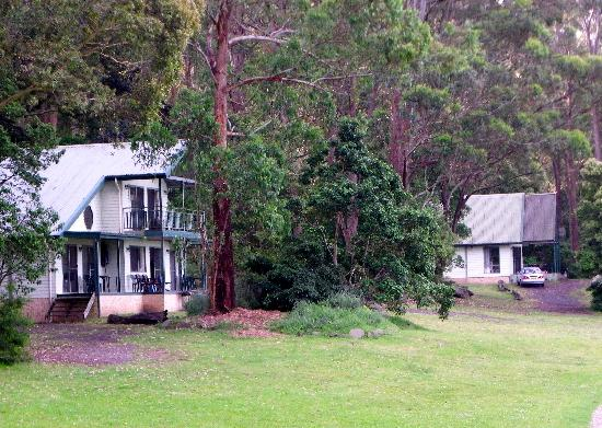 Shoalhaven Lodge: The lodges are well spaced for privacy