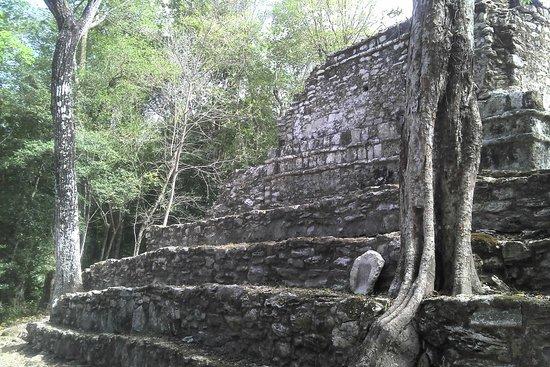 Sian Ka'an Jeep: Templo Rosa