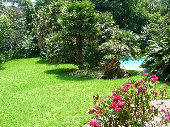 La Bougain Villa: Pool and Garden View