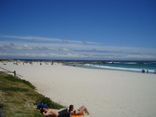 Camp's Bay Beach : Camps Bay  beach