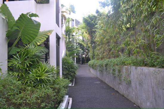 Kata Gardens Apartments: path to apartment