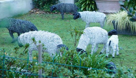 Le Quartier Francais : LQF - sheep