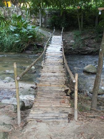 Hotel Posada La Bokaina: Bamboo bridge entrance