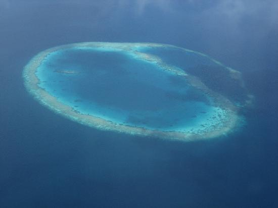 Cinnamon Hakuraa Huraa Maldives: Vue de l'hydravion