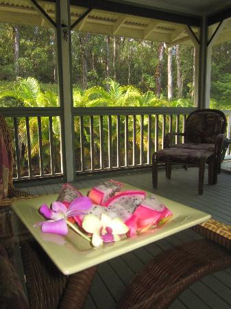 The Ohia House: View from the breakfast table.