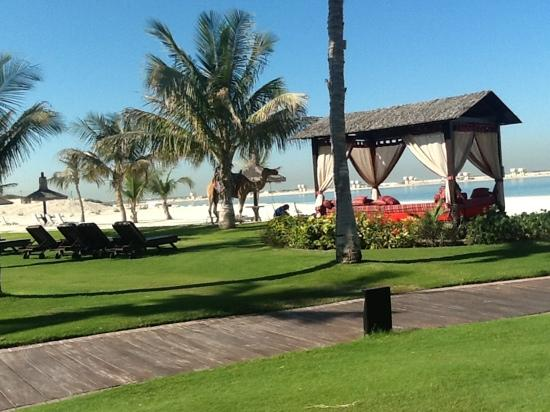 JA Palm Tree Court: Anyone for a Camel ride?