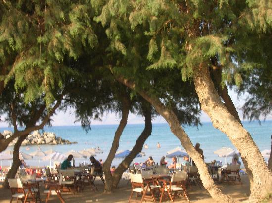 أفرودايت بيتش: la plage