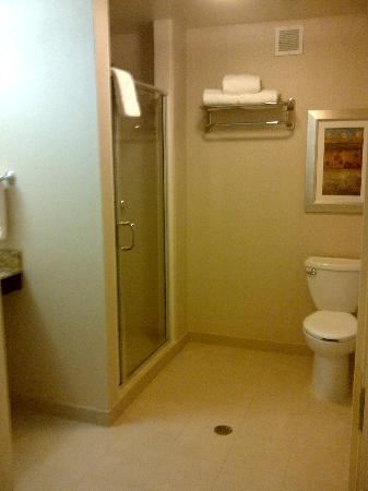 Hilton Garden Inn Seattle/Bothell, WA: Spacious Bathroom