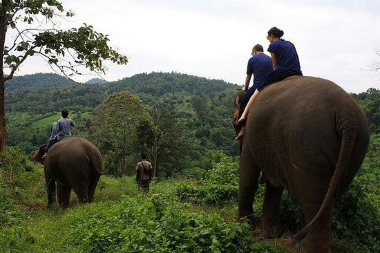 Mae Taeng, Tajlandia: Elephant riding