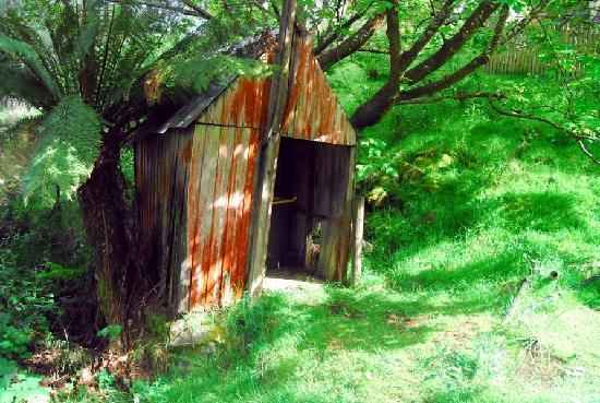 Myrtle Forest: Shed on Fairy Glen Road