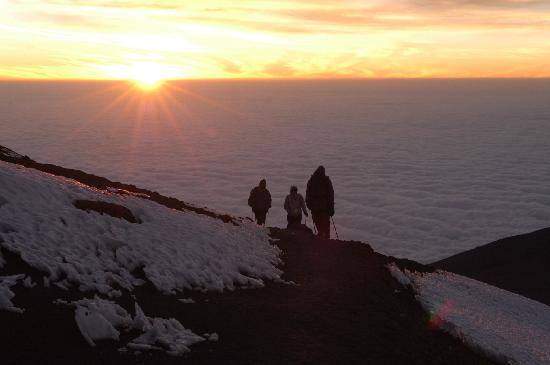 The Southern Terrain - Day Tours: Kilimanjaro