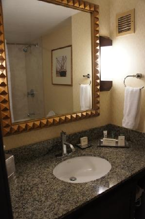 Hilton Stockton: Bathroom