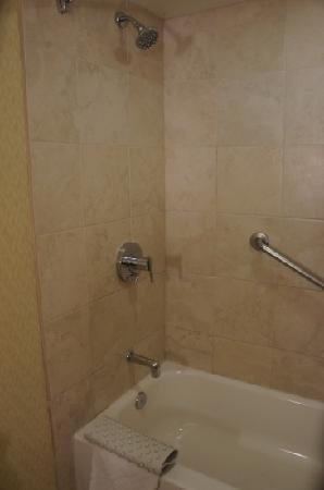Hilton Stockton: Shower