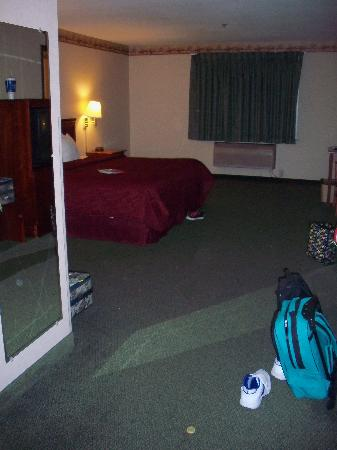 Comfort Inn & Suites : Main room.