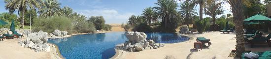 Al Maha, A Luxury Collection Desert Resort & Spa: View
