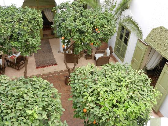Riad Camilia: Le patio intérieur