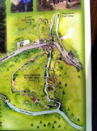 The Hafod Hotel: the local nature walk on map