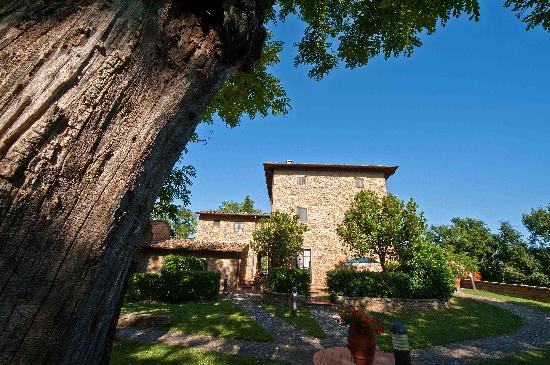 Borgo La Casaccia: Panoramic Terrace