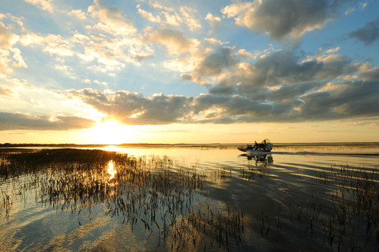 An airboat ride is just one way to take in Kissimmee's abundant wildlife and spectacular scenery