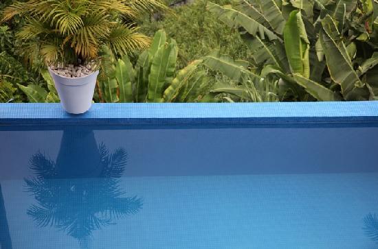 Aram Yami Hotel : Top Suite Pool