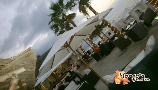 Terraza Y Area Lounge Picture Of Mango S Beach Club