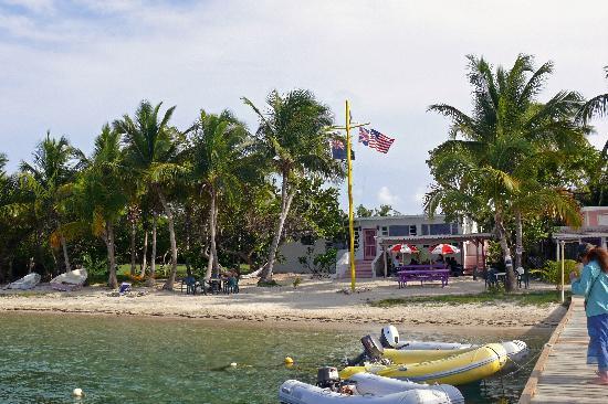 Beef Island Guest House: GH vom Pier aus geswehen