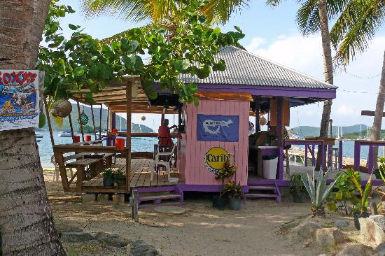 Beef Island Guest House: Die Bar
