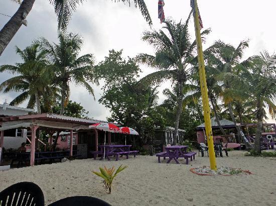 Beef Island Guest House: Bar & Restaurant